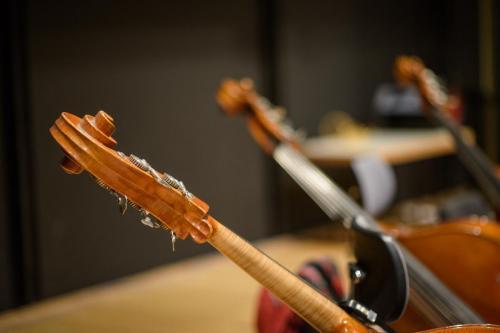 Das kritische Orchester-6967