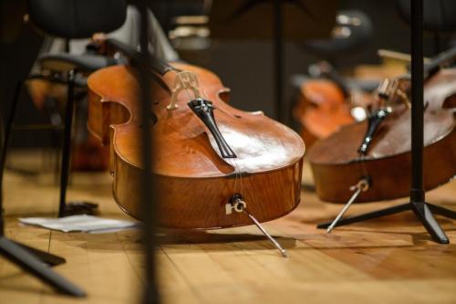 Das kritische Orchester-6969